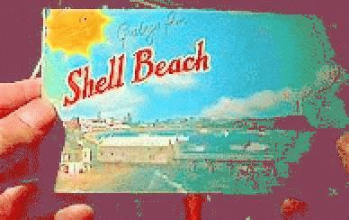 The image http://www.log24.com/log/pix06/060105-ShellBeach.jpg cannot be displayed, because it contains errors.