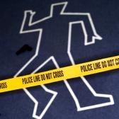 'Boston Blotter body outline