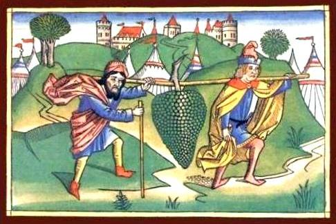 'Spies returning from the land of Canaan with a cluster of grapes,' Biblia Sacra Germanica