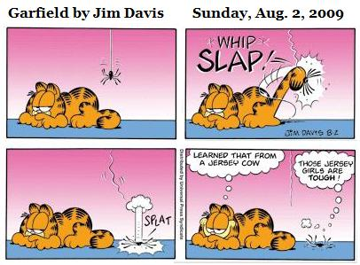 Garfield on Sunday, August 2, 2009: Spider gets tail-slap learned from Jersey cow, says 'Those Jersey girls are TOUGH.'