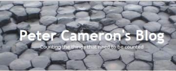 http://www.log24.com/log/pix10B/100826-CameronBlog.jpg