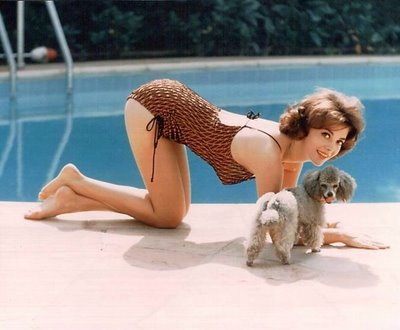 http://www.log24.com/log/pix11C/111202-NatalieWood_with_Poodle.jpg