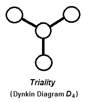Dynkin diagram D4 for triality