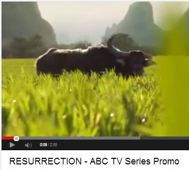 IMAGE- Chinese field from opening of TV series 'Resurrection'