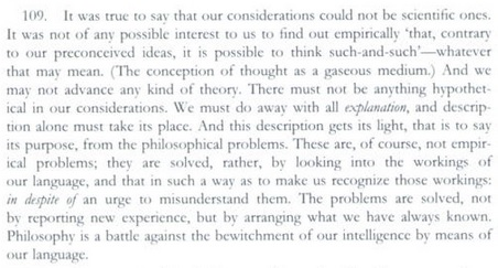 IMAGE- Wittgenstein on 'the bewitchment of our intelligence'