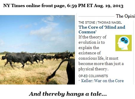 IMAGE- NY Times online front page with caption- 'Thereby hangs a tale.'